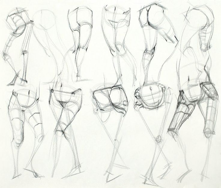 736x624 Human Anatomy Study 203 Best Drawing Tutorials Bones Muscles Human