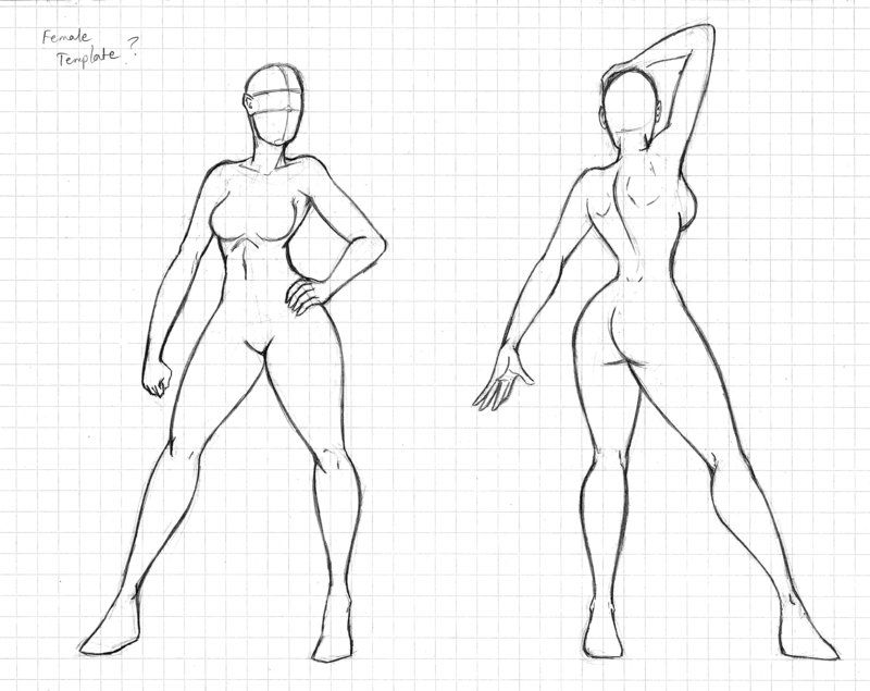 800x635 Pictures Female Sketching Body Templates,