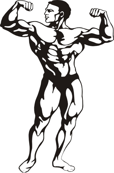 Bodybuilder Drawing At Getdrawings Com