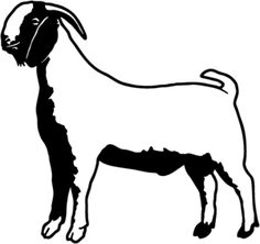 236x222 Boer Goat Clip Art Do Not Have To Own Goats Or Have Any Previous