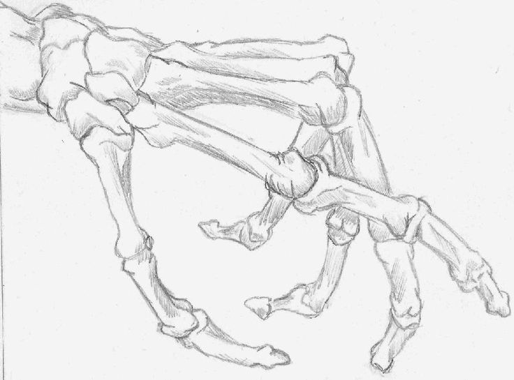Bone Hand Drawing