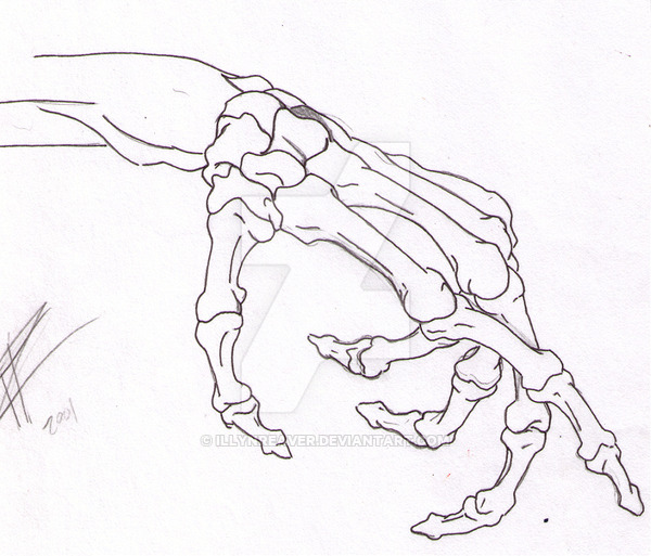 600x513 Skeleton Hand By Illynreaver