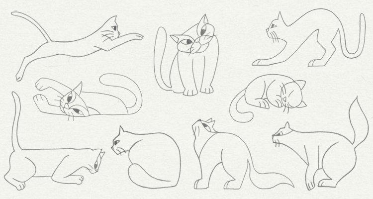 750x400 Animals In Various Postures Drawing Books Maria Cruz Martin