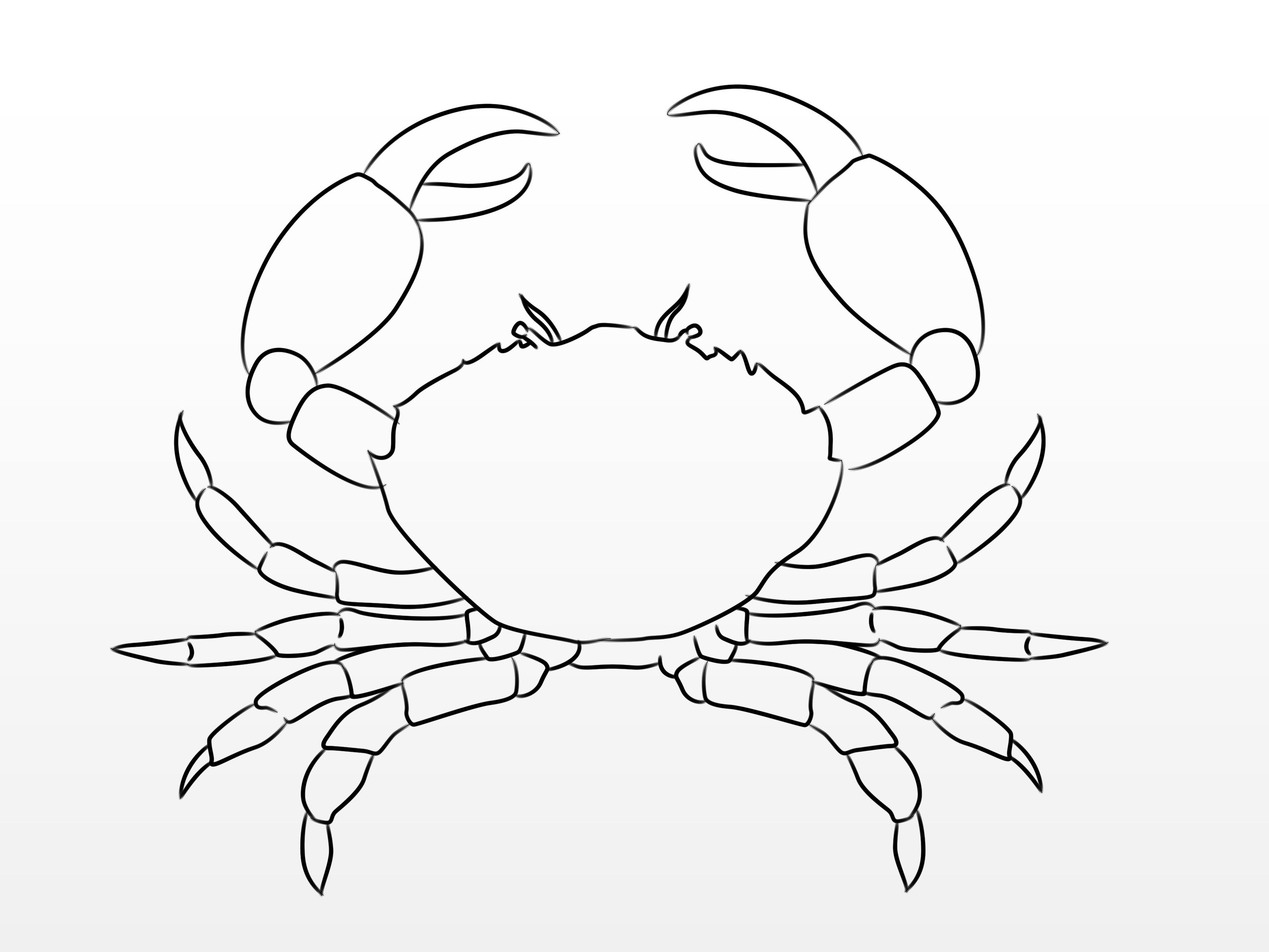 3200x2400 How To Draw A Crab 10 Steps (With Pictures)