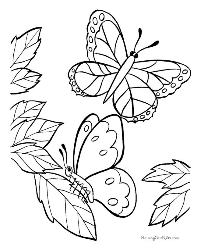 670x820 Coloring Pages Graceful Draw Butterflies