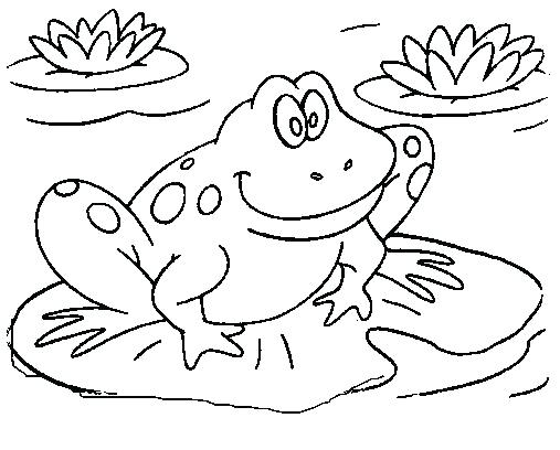 507x408 Free Frog Coloring Pages Cute Frog Coloring Books For Drawing Kids
