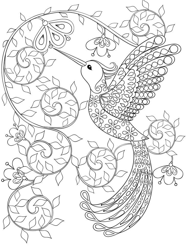 736x971 Coloring Book Free