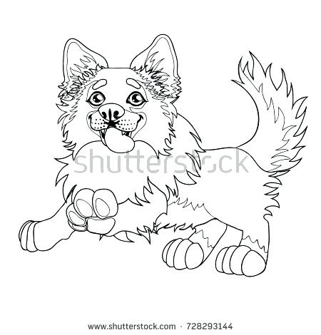 450x470 Border Collie Coloring Pages Astrology Coloring Pages Also Border