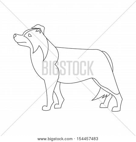 450x470 Border Collie Line Flat. Dog Vector Amp Photo Bigstock