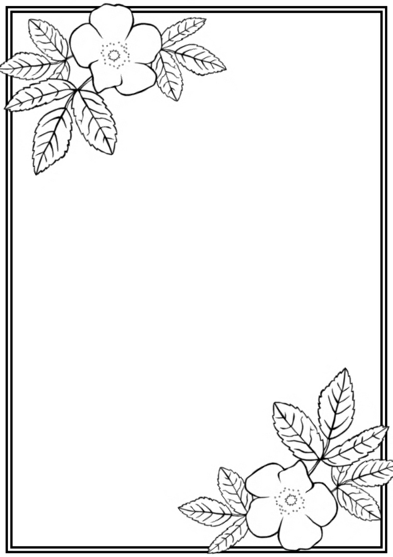 794x1123 Flower Border In Drawing