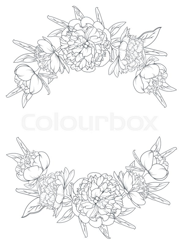 598x800 Spring Summer Peony Rose Blooming Flowers Vintage Border Frame
