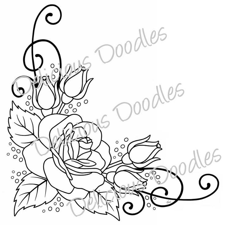 736x736 Rose Border Drawing