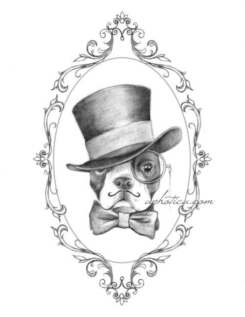 500x647 Boston Terrier Gentleman In Top Hat And Bow Tie By Aphotica