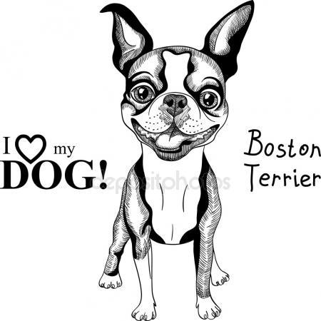 450x450 Boston Stock Vectors, Royalty Free Boston Illustrations