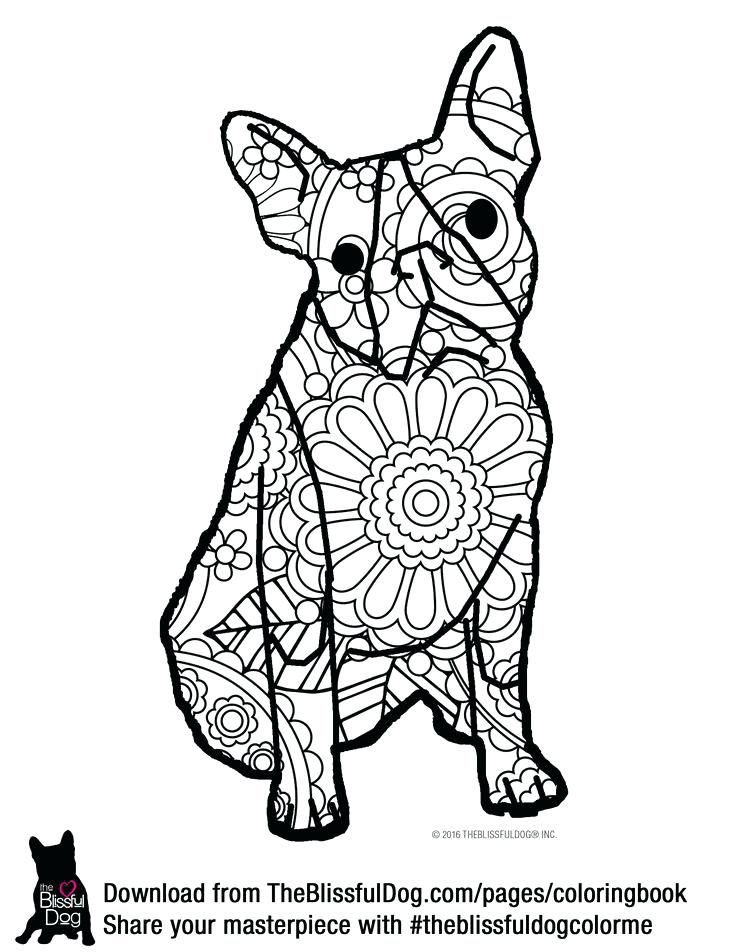 736x952 Boston Terrier Coloring Page