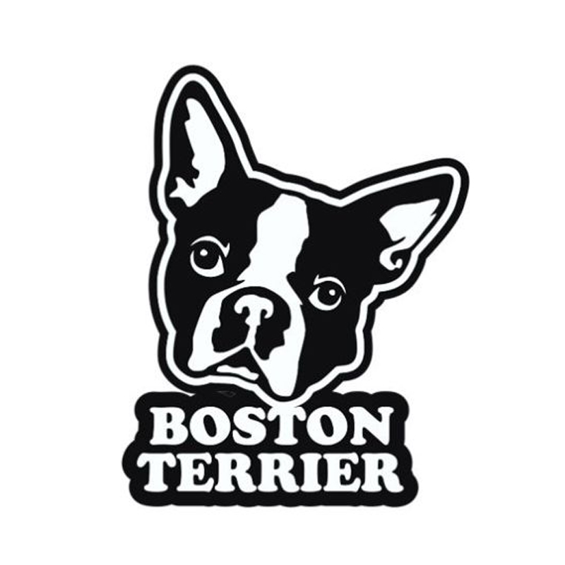800x800 Buy Boston Terrier Car Stickers And Get Free Shipping