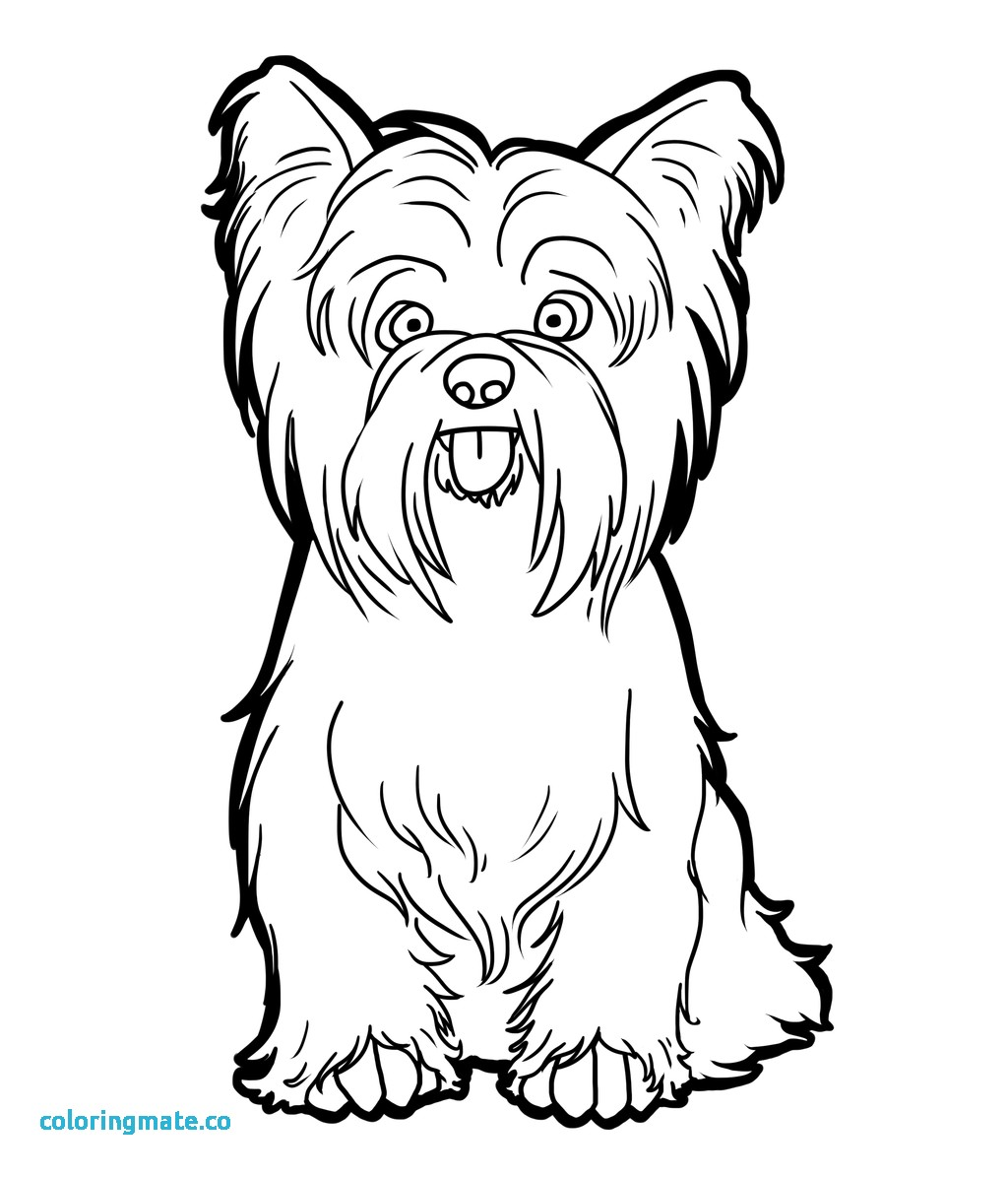 1024x1195 31 Boston Terrier Coloring Page