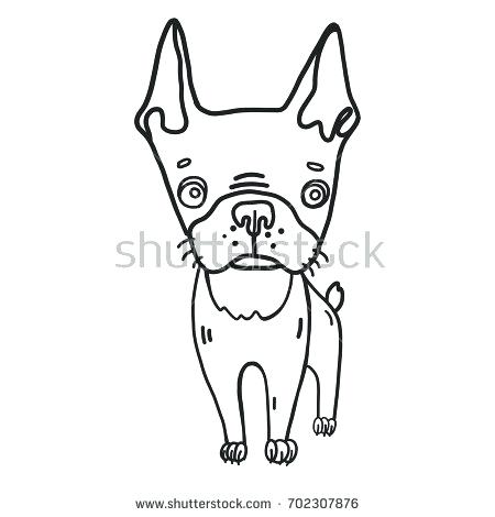 450x470 Ideas Boston Terrier Coloring Page Or Terrier Coloring Pages