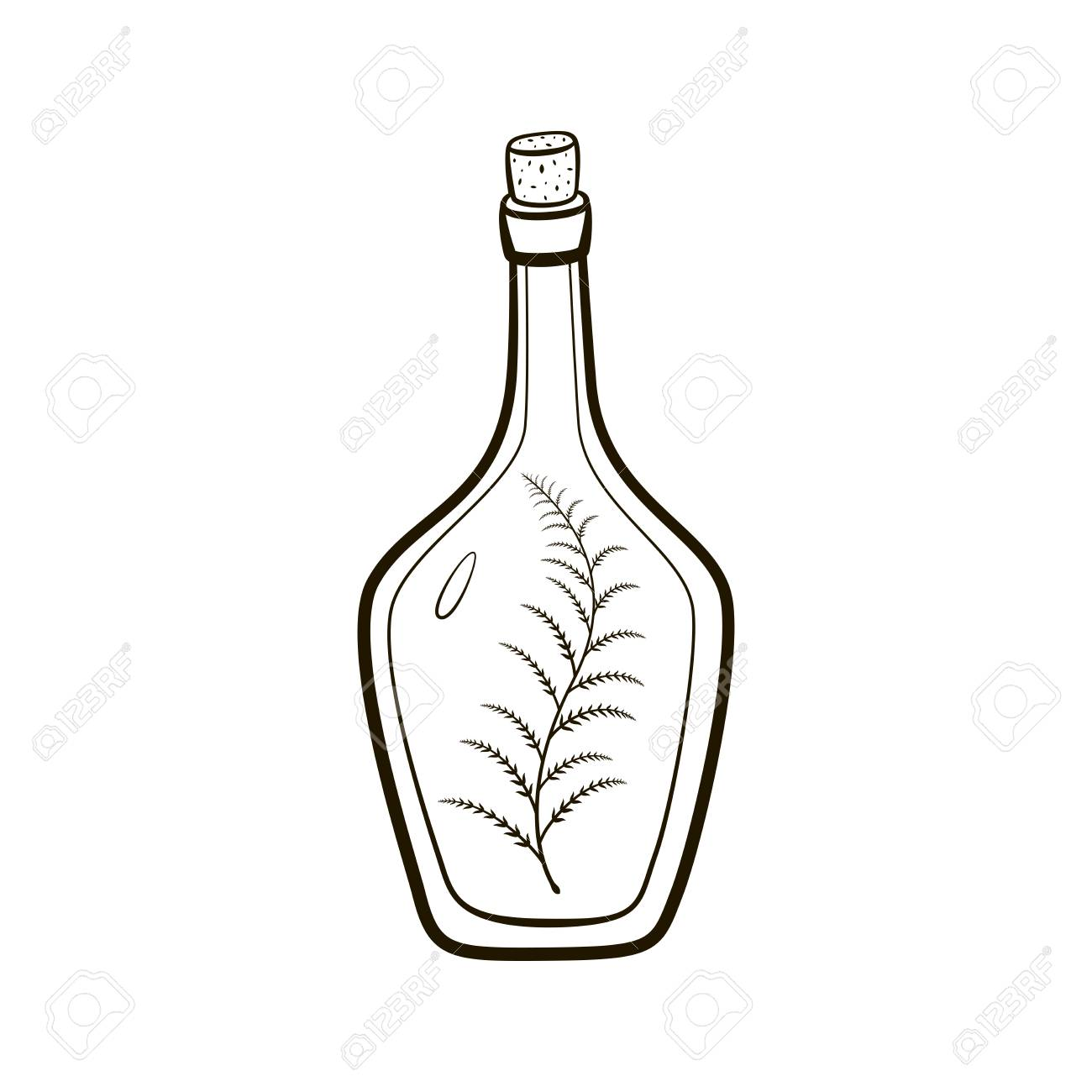 1300x1300 Vintage Bottle With Sprig Inside Hand Drawing Illustration