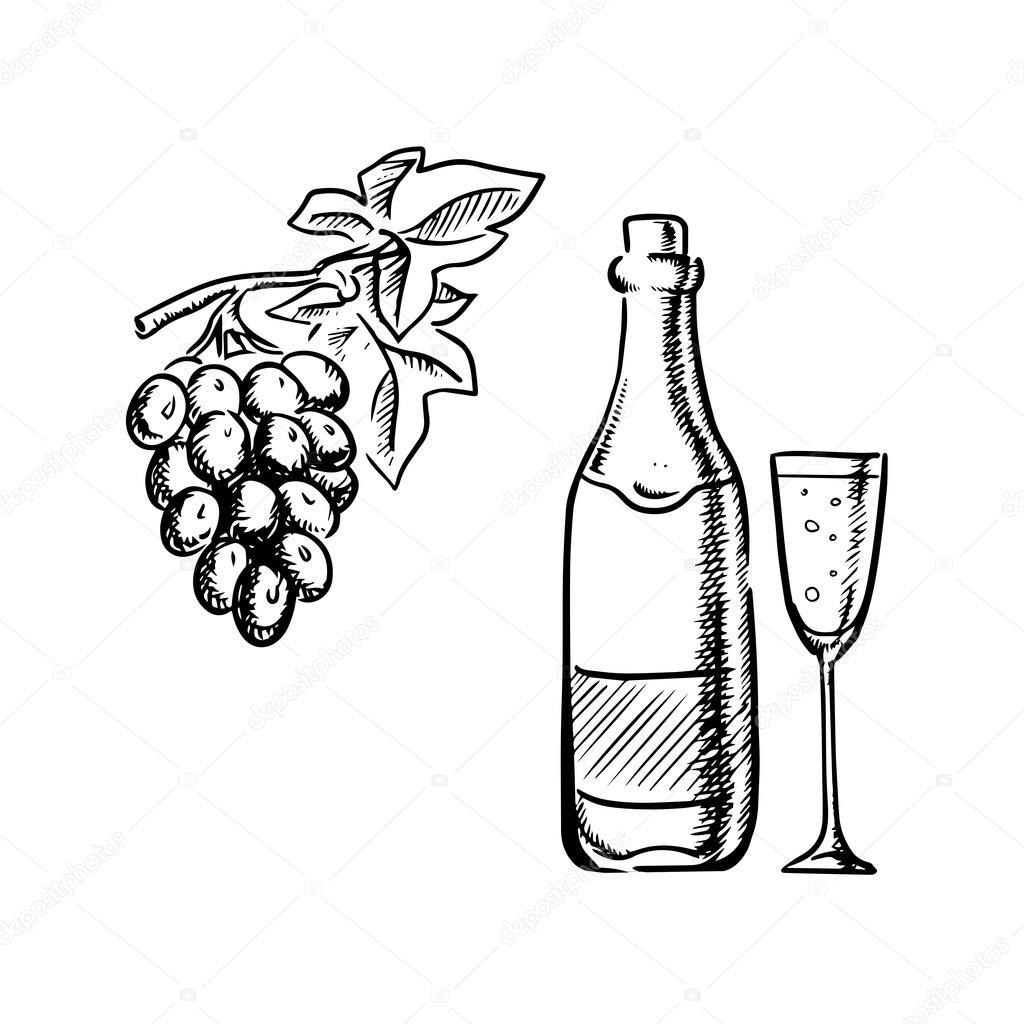 1024x1024 Wine Bottle, Glass And Grapes Sketch Stock Vector Seamartini