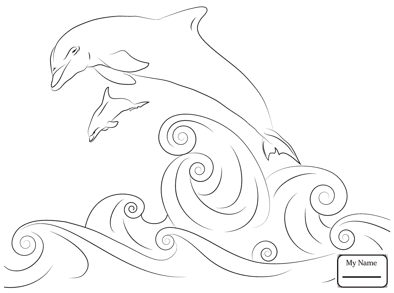 1253x934 Coloring Pages Mammals Dolphins Bottlenose Dolphins