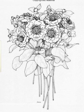 Bouquet Flowers Drawing