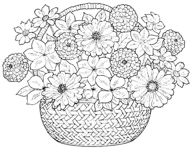 767x600 Coloring Pages With Flowers Flower Coloring Page Coloring Pages