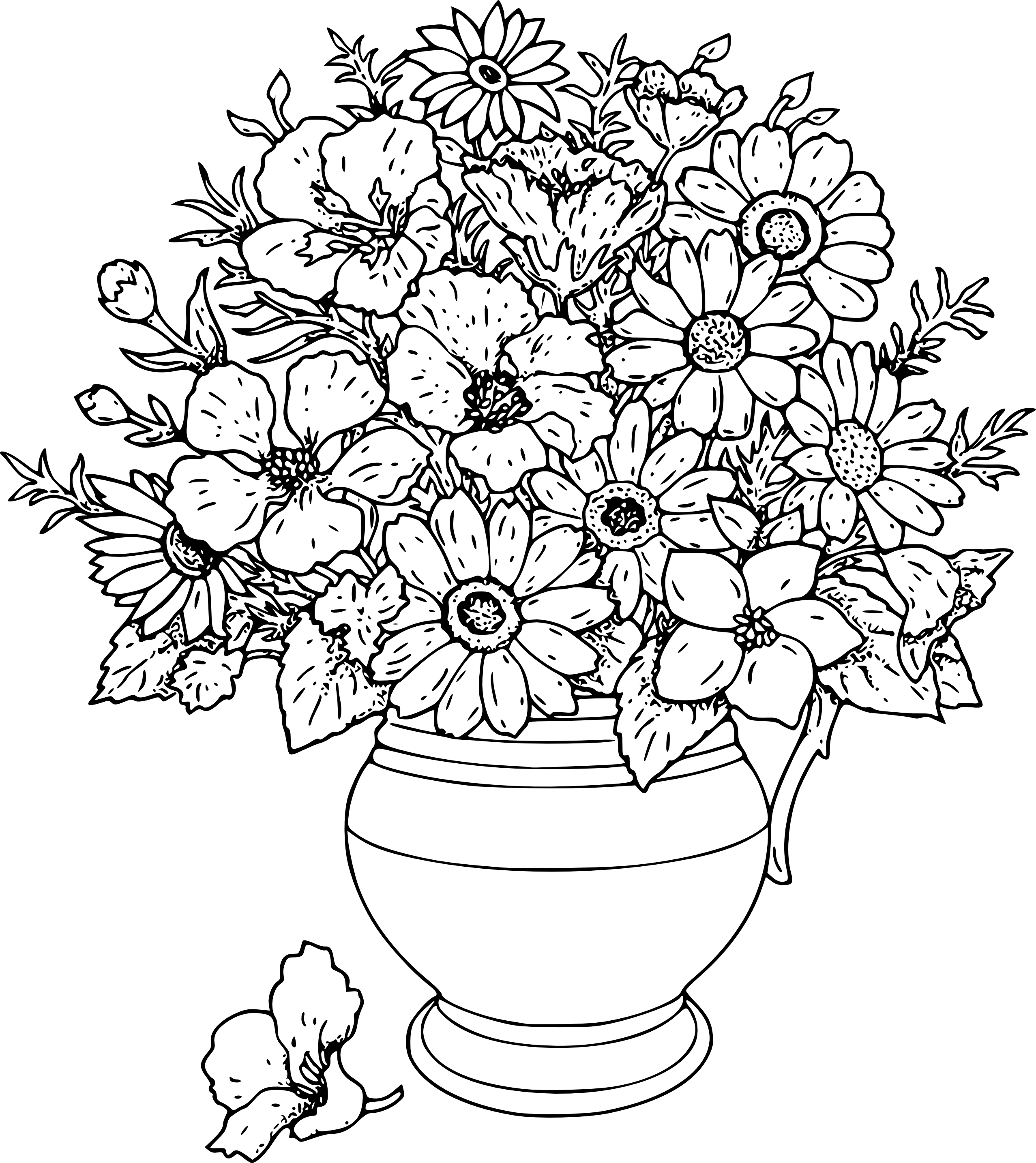 2555x2869 Flowers Line Drawing Images