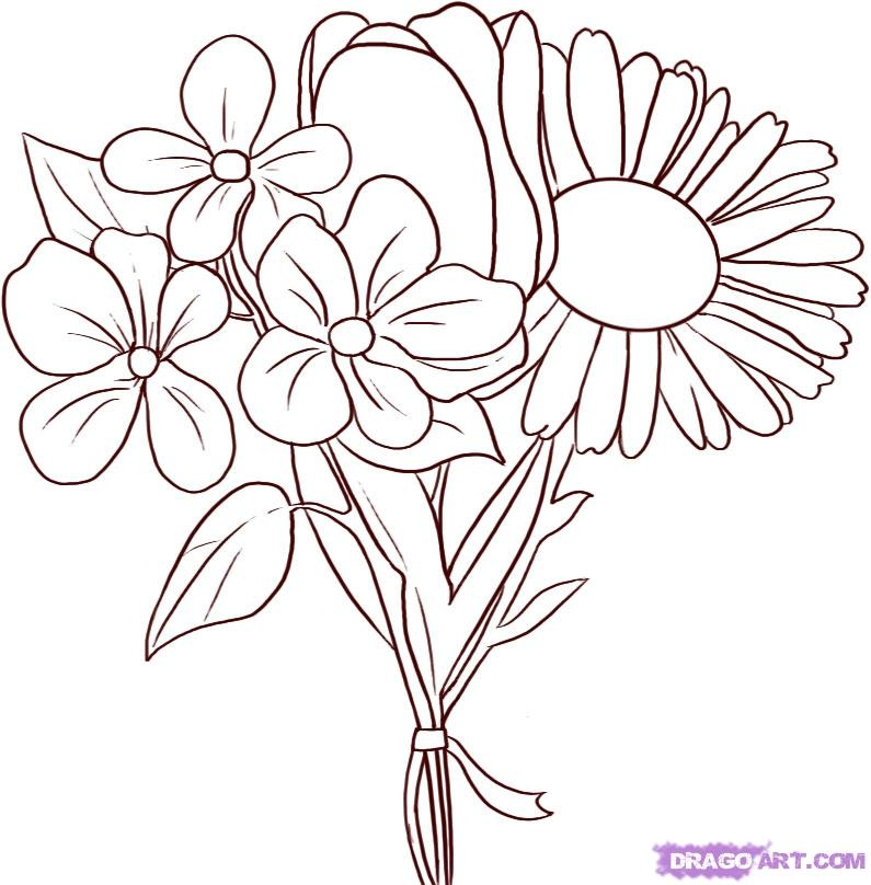 795x808 Flower Bouquets Drawings