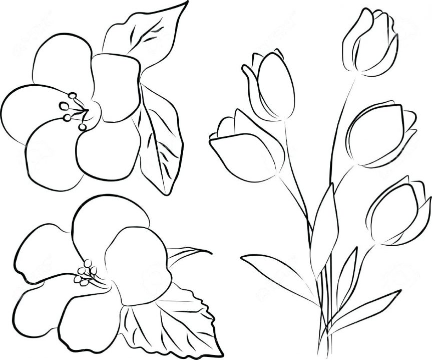 863x718 Pin Drawn Bouquet Outline Flower Images Tattoo On Hip No Look Nice