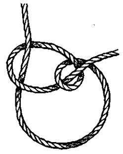 Bow Line Drawing