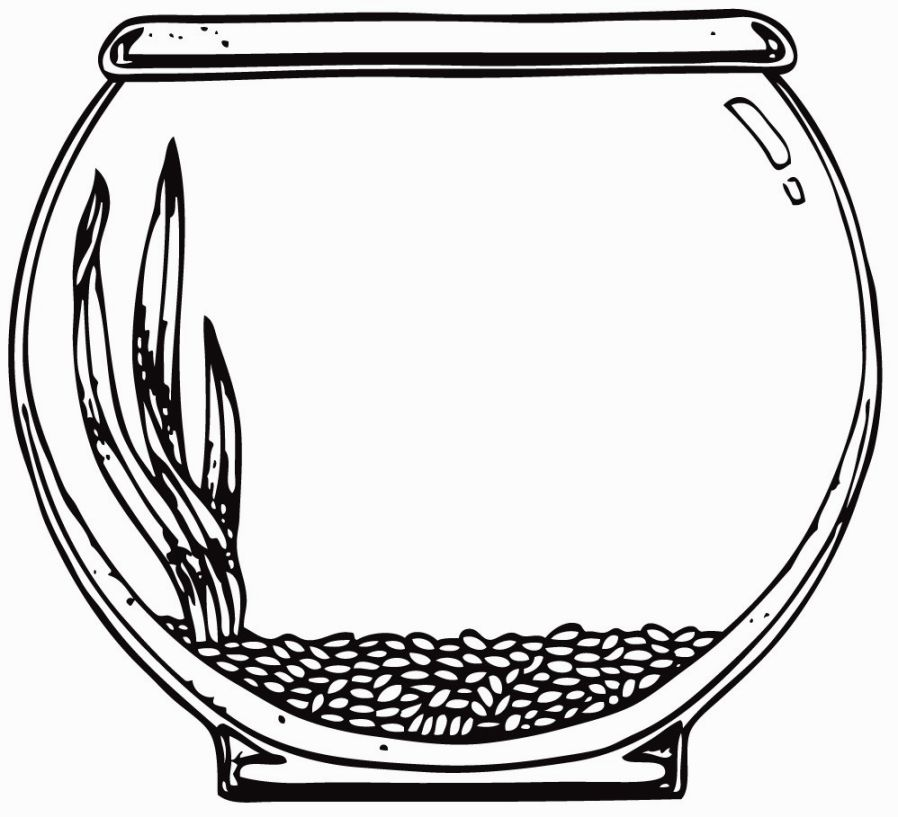 898x817 Complete Fish Bowl Coloring Page Tank Clipart Pencil And In Color