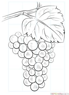 236x325 How To Draw A Bowl Of Fruits Step By Step Drawing Tutorials