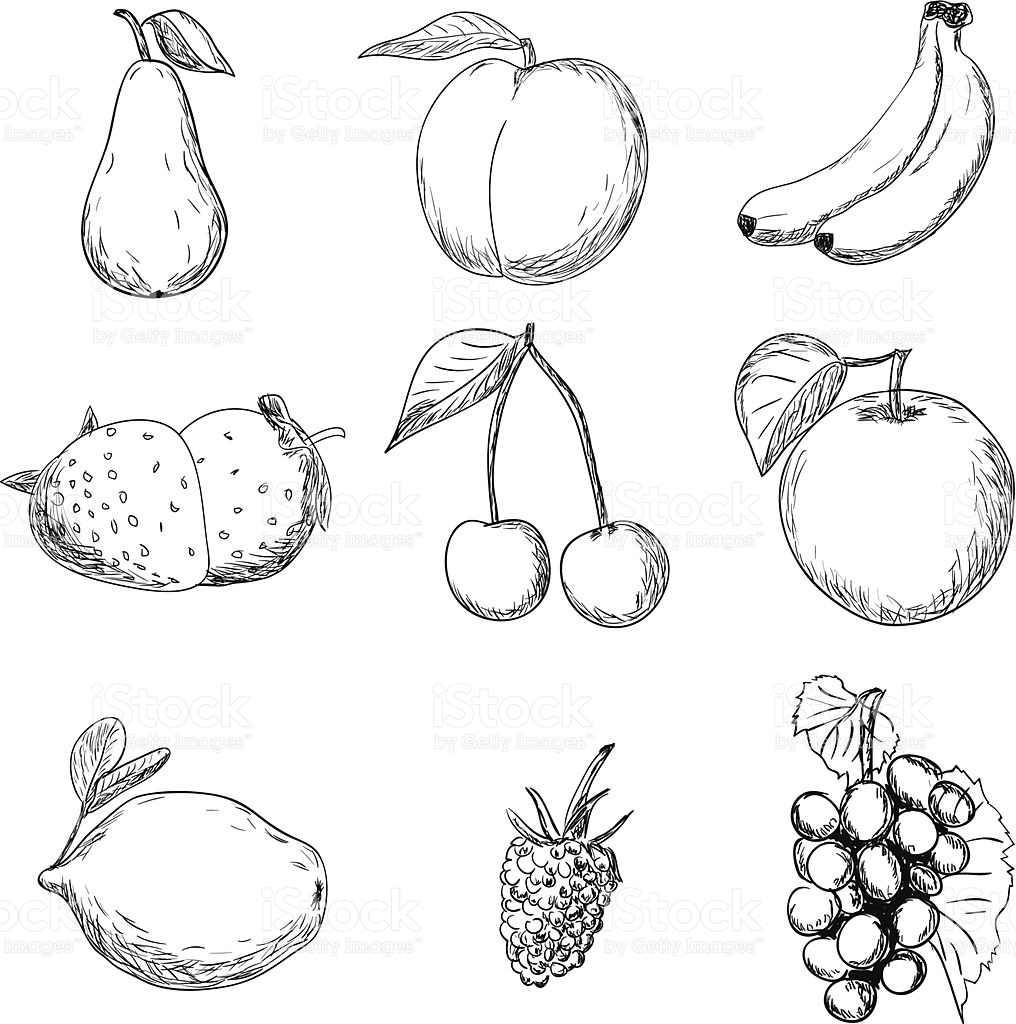 1016x1024 Drawing Images Of Fruits Fruits Drawing Images Fruit Bowl