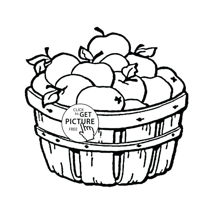 736x737 Fruit Basket Coloring Pages Fruit Bowl Coloring Page Free Fruit