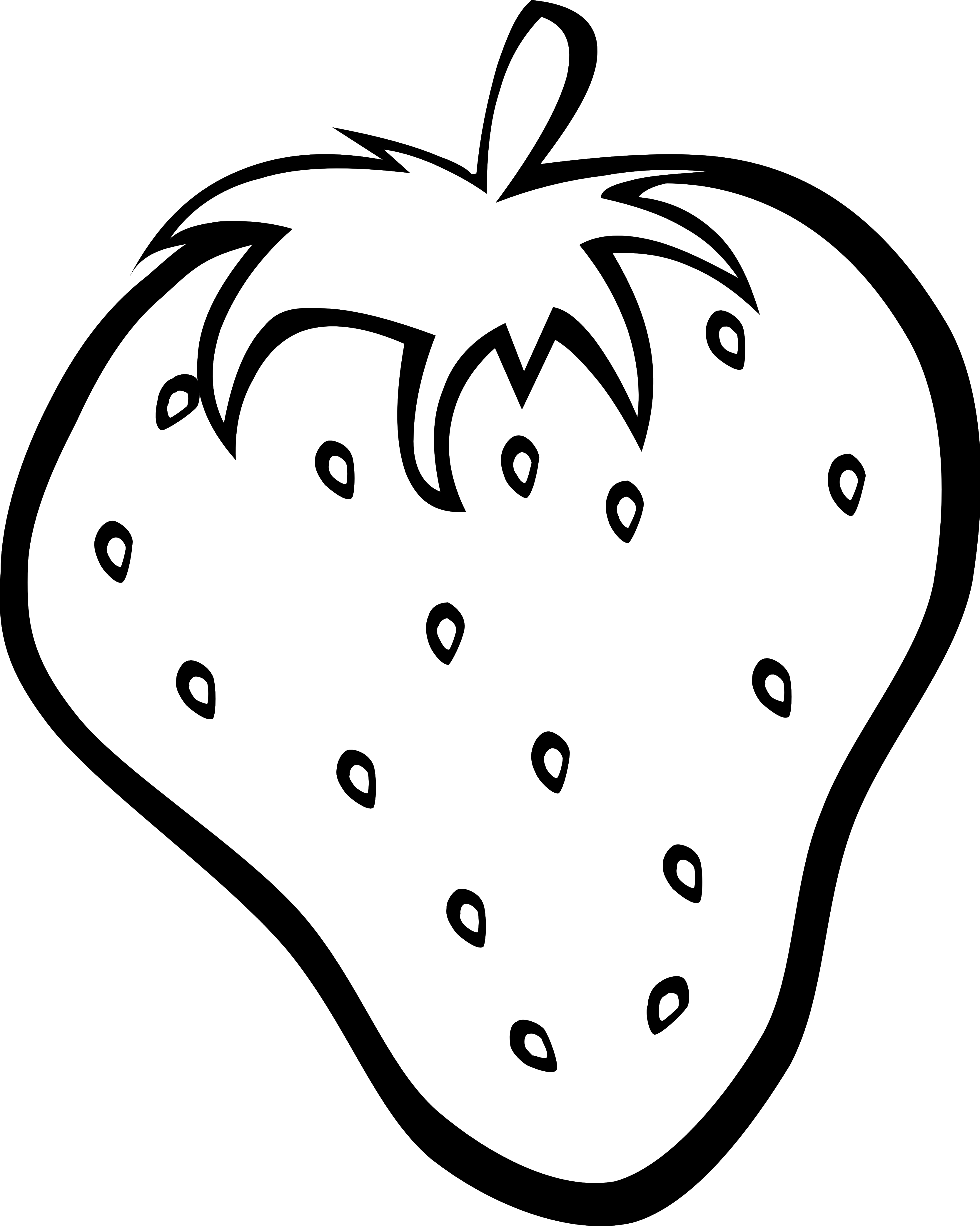 3333x4169 Fruit Drawings