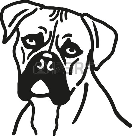 438x450 Boxer Dog Head Royalty Free Cliparts, Vectors, And Stock