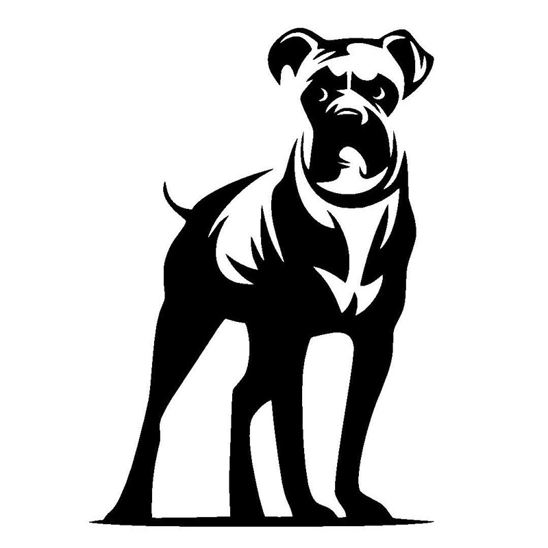 800x800 Buy Boxer Sticker And Get Free Shipping