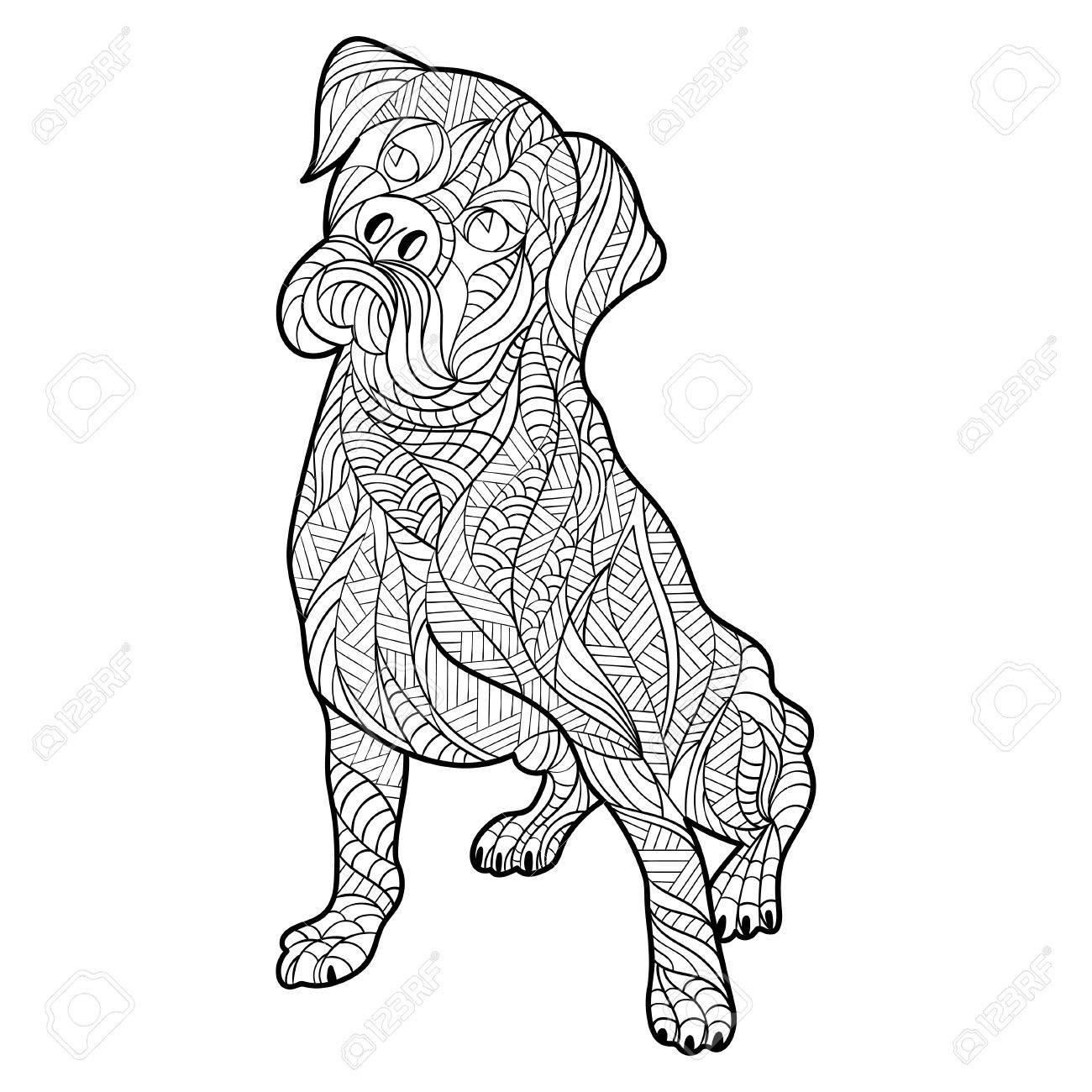 1300x1300 Vector Monochrome Hand Drawn Zentagle Illustration Of Boxer Dog