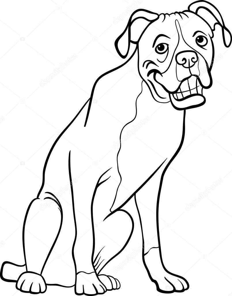 805x1024 Boxer Dog Cartoon For Coloring Book Stock Vector Izakowski