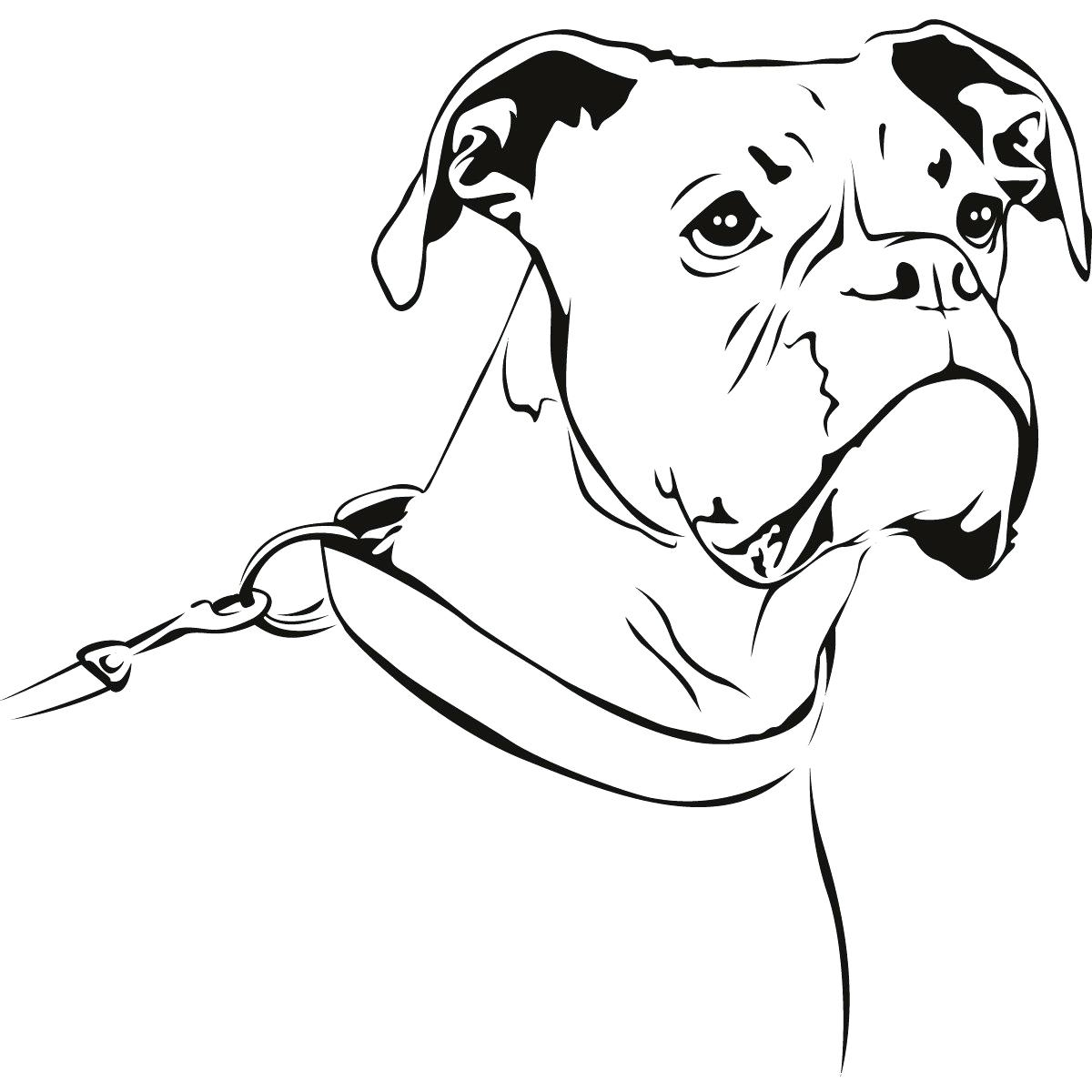 Boxer dog drawing at free for personal for Printable boxer dog coloring pages