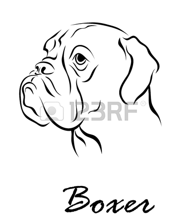 Boxer Dog Line Drawing
