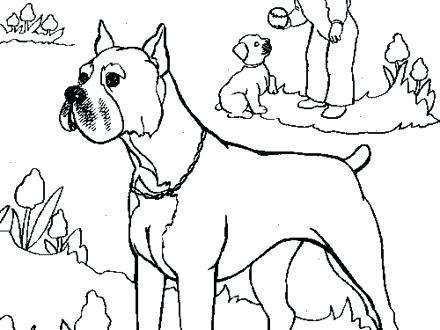 440x330 Boxer Dog Coloring Pages Zoom Puppy Printable Coloring Pages Boxer