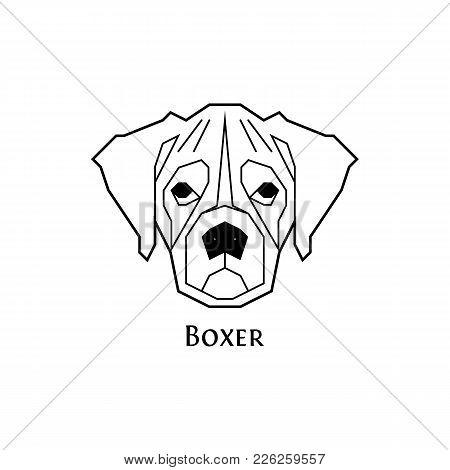 450x470 Boxer Dog Images, Illustrations, Vectors