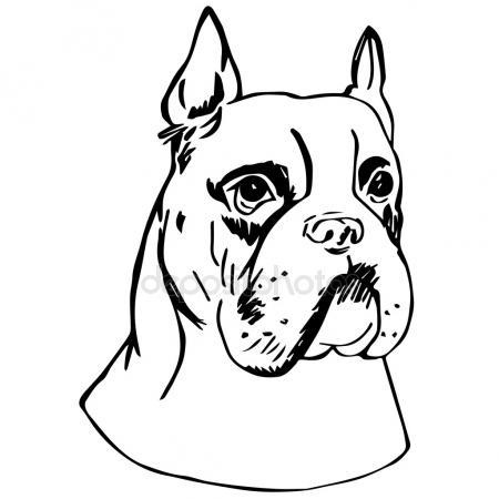 450x450 Boxer Dog Stock Vectors, Royalty Free Boxer Dog Illustrations