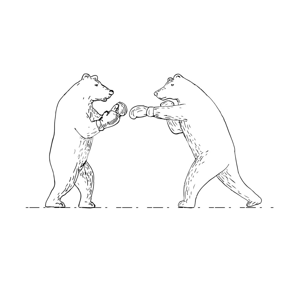 1000x1000 Drawing Sketch Style Illustration Of Two Grizzly Bear Boxer Boxing