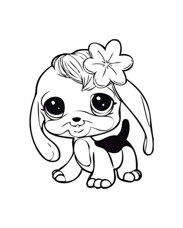 600x750 Baby Puppy Coloring Pages