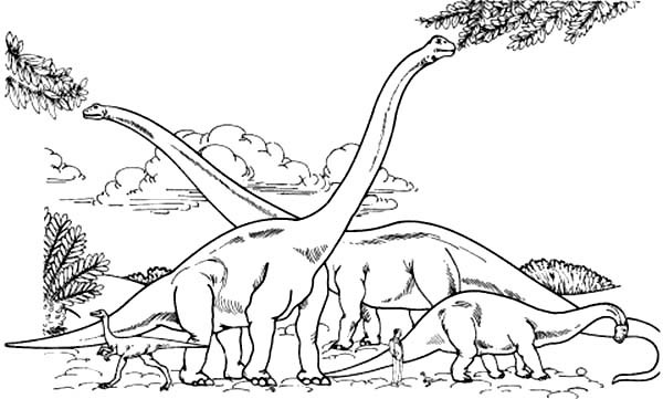600x361 Endorsed Brachiosaurus Coloring Page Meghan Trainor Pages