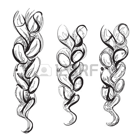 450x450 Braid Sketch Of The Line. Poster For Hair Salon Royalty Free