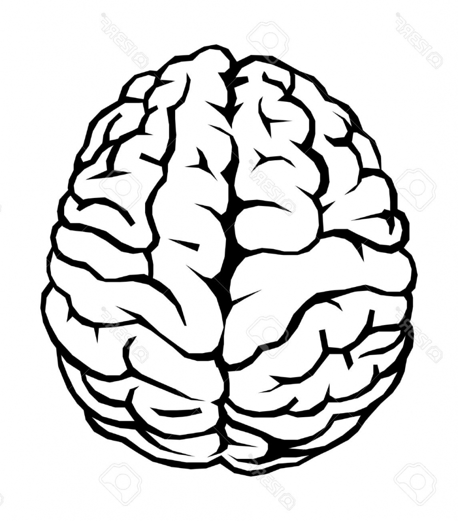 900x1024 Brain Cartoon Drawing Simple Brain Drawing Cartoon Brain Outline